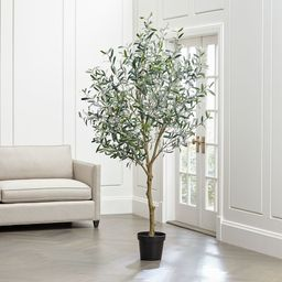 Faux Olive Tree | Crate & Barrel