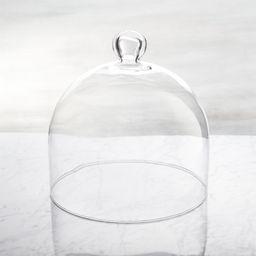 Glass Dome   Crate & Barrel