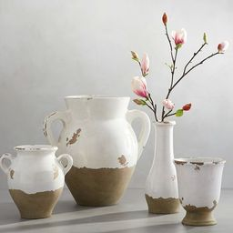 Tuscan Terra Cotta Vases   Pottery Barn (US)