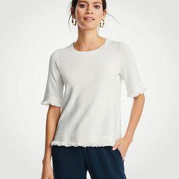 Fringe Sweater Tee | Ann Taylor (US)