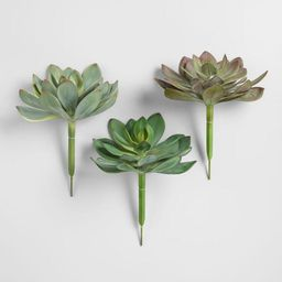 Large Faux Succulent Picks Set of 3   World Market