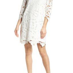 Skye Lace Shift Dress | Nordstrom