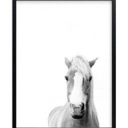"""""""Presence"""" - Photography Limited Edition Art Print by Debra Butler.   Minted"""