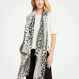 Spotted Scarf | Ann Taylor (US)