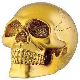 Gold Skull Head Collectible Skeleton Decoration Figurine Model | Amazon (US)