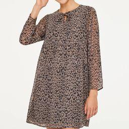 Leopard Print Swing Dress | LOFT