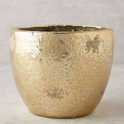 Aureate Pot | Anthropologie (US)