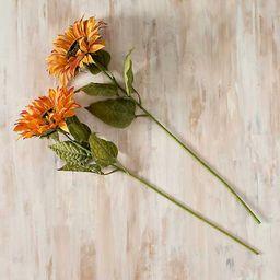 Orange Sunflower Stems, Set of 2   Kirkland's Home