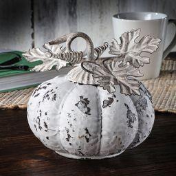 Antique Pumpkin with Leaves | Wayfair North America