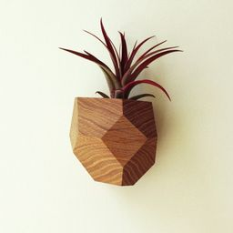 Wall Mounted Geometric Air Plant Holder Made from Reclaimed   Etsy   Etsy (US)