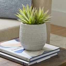 Cosgrove Handcrafted Ceramic Planters | Pottery Barn (US)