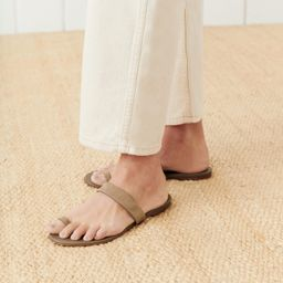 Oiled Leather Strap Sandal - Taupe   Jenni Kayne   Jenni Kayne