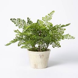 """13"""" x 13"""" Artificial Fern Plant in Terracotta Pot - Threshold™ designed with Studio McGee 