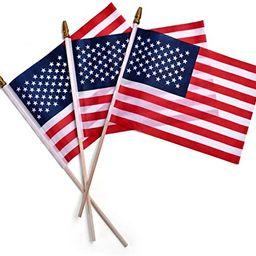 Small American Flag 4x6 Inch-12 Sets, American Stick Flags/Grave Marker Flags/Small US Flag with ...   Amazon (US)