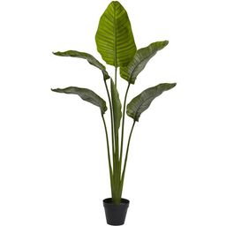 Nearly Natural 60in. Travelers Palm Artificial Tree (Indoor/Outdoor), Green | Walmart (US)