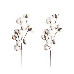 Jpgif 2Pcs 21 inch Naturally Dried Cotton Stems Farmhouse Style Artificial Flower Fill Home Decor... | Walmart (US)