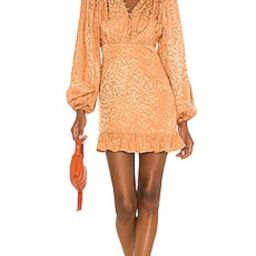 Lovers + Friends Stormy Dress in Tan Leopard from Revolve.com | Revolve Clothing (Global)