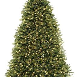 NATIONAL Tree COMPANY Dunhill Fir Tree with Dual Color LED Lights , 9 Feet | Amazon (US)
