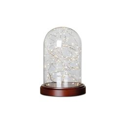 Modern Expressions Glass Cloche Glass Dome and LED String Lights | Walmart (US)