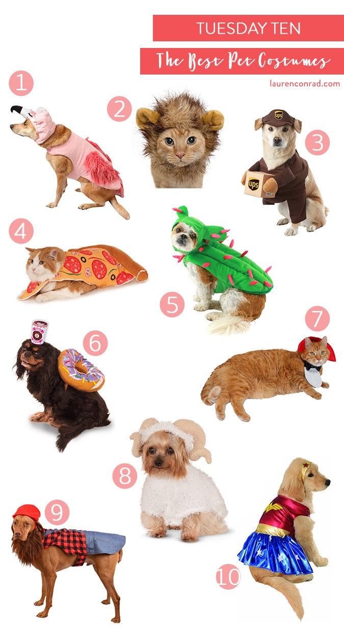 30fb96c0d3c04 Boots & Barkley Flamingo Halloween Costume Set, $12.99 2. Pet Krewe Lion  Mane Costume for Cats, $14.95 3. California Costumes UPS Delivery Drive Dog  Costume ...