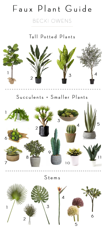 Faux Plant Guide