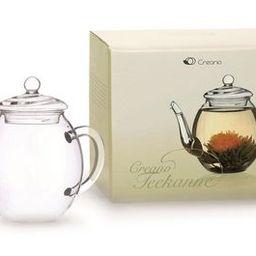 Creano teapot, 500ml | OTTO DE